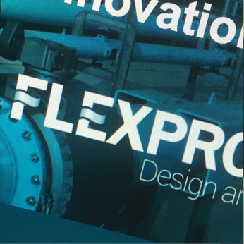 Flexprocess.jpg