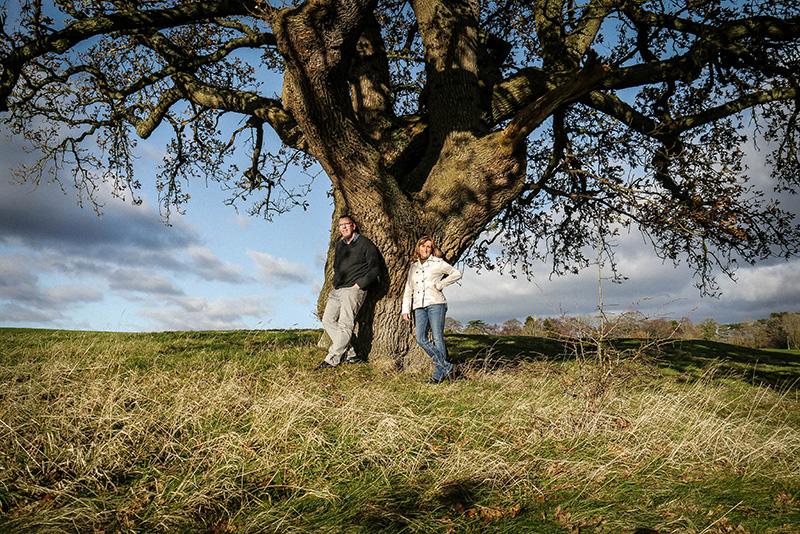 Alpaz Tree-LR