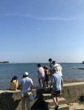 sakushima06.png