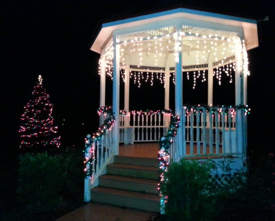 Christmas in the Park.jpg