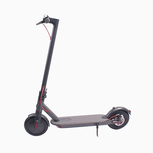 8inch 2 Wheel Stand Up Electric Scooter with CE Approved, the Most Popular Elect