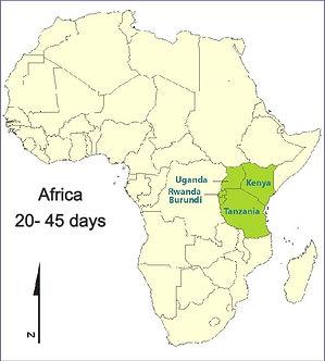 africa%2520map_edited_edited.jpg