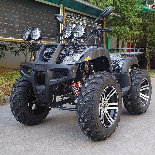 Adult ATV 800cc 4x4