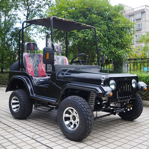 Automatic Adult 150CC 200cc 300CC UTV 4x4 with Spare Tyre