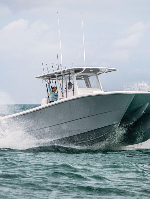 Grey Invincible Catamaran