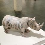 Northern White Rhino Sculpture