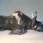 Blue Babe mummified Steppes Bison