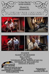 PLAYING THE ASSASSIN Poster