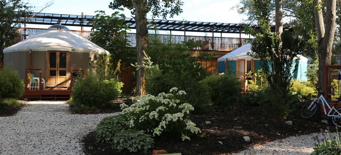 Yurt gardens and paths