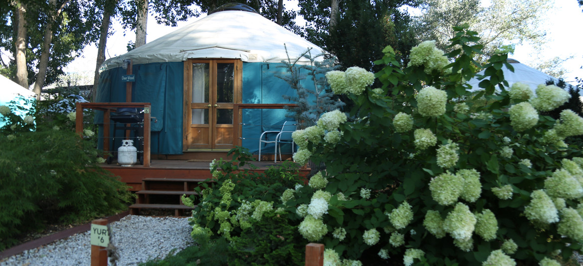 Yurt garden