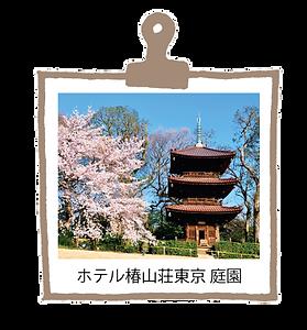 椿山荘.png