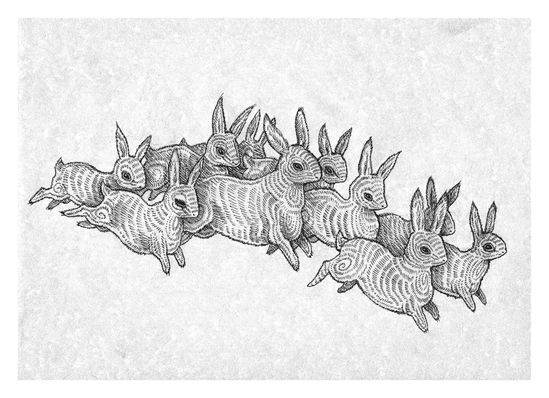 'Leporidae' by Vilde Dyrnes Ulriksen   Mokinzi Art