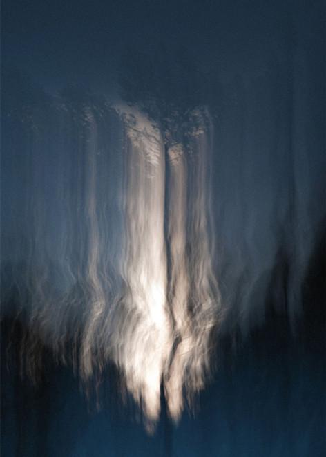 Photography by Vilde Dyrnes Ulriksen   Mokinzi Art