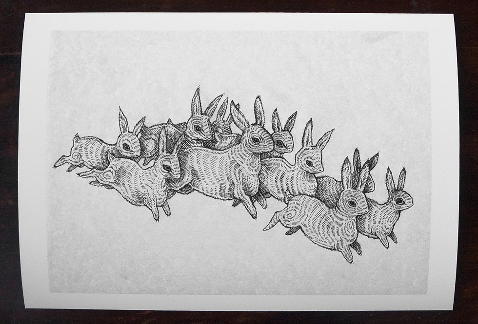 'Leporidae' Limited Edition A4 Print