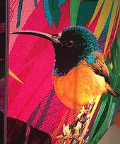 Abat-jour oiseau