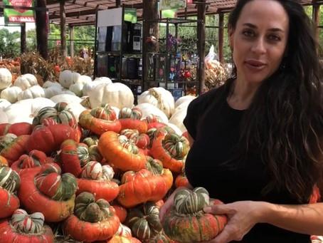 Surviving the Pumpkin Patch