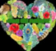 Ame de Nature chamanisme hypnose Adeline Raffin