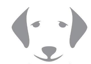 איך יודעים שבעל חיים חולה בכלבת