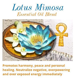 Lotus Mimosa Blended Essential Oil