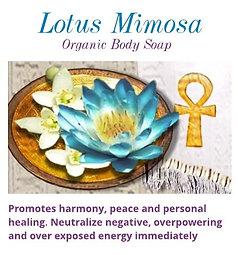 Lotus Mimosa Organic Soap