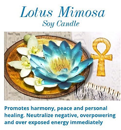 Lotus Mimosa Soy Candle