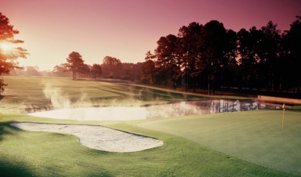 Sunday Reflections: The Masters