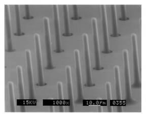 Nano Probes / Tubes