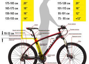 Как подобрать велосипед по росту.