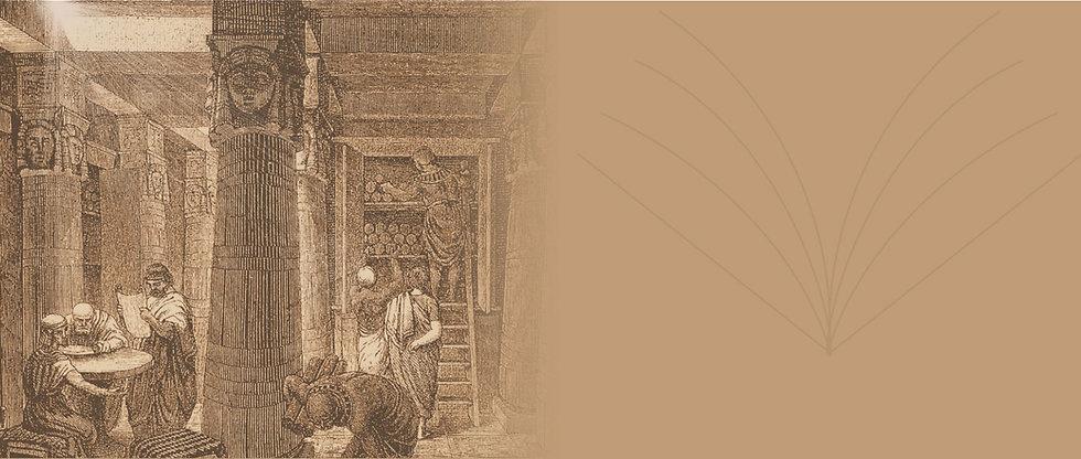 alexandria-2-library.jpg