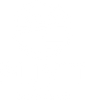 BFB_plivit_logo.png