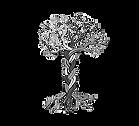 Kavod Boston Logo