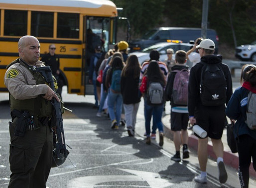 How to Prevent School Shootings ?