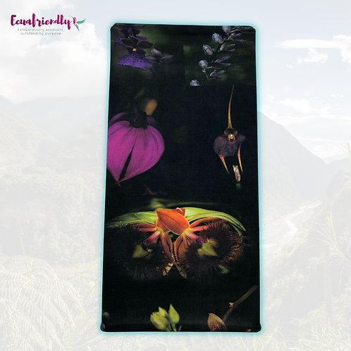 Orchids of Ecuador 1