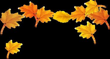 kisspng-autumn-leaf-color-desktop-wallpa