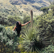 Endemic fauna of El Cajas National Park