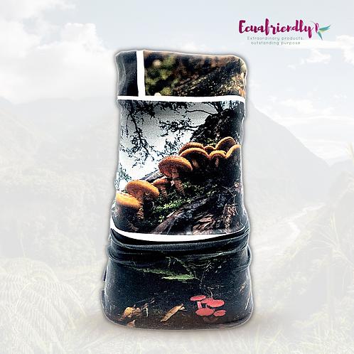 Mushrooms of Ecuador