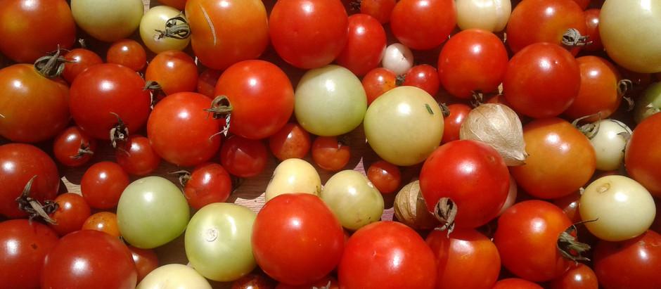 ¿Consumir orgánico es caro?