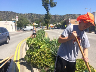 CERB + Occidental College Volunteers Collaborate for Neighborhood Workday