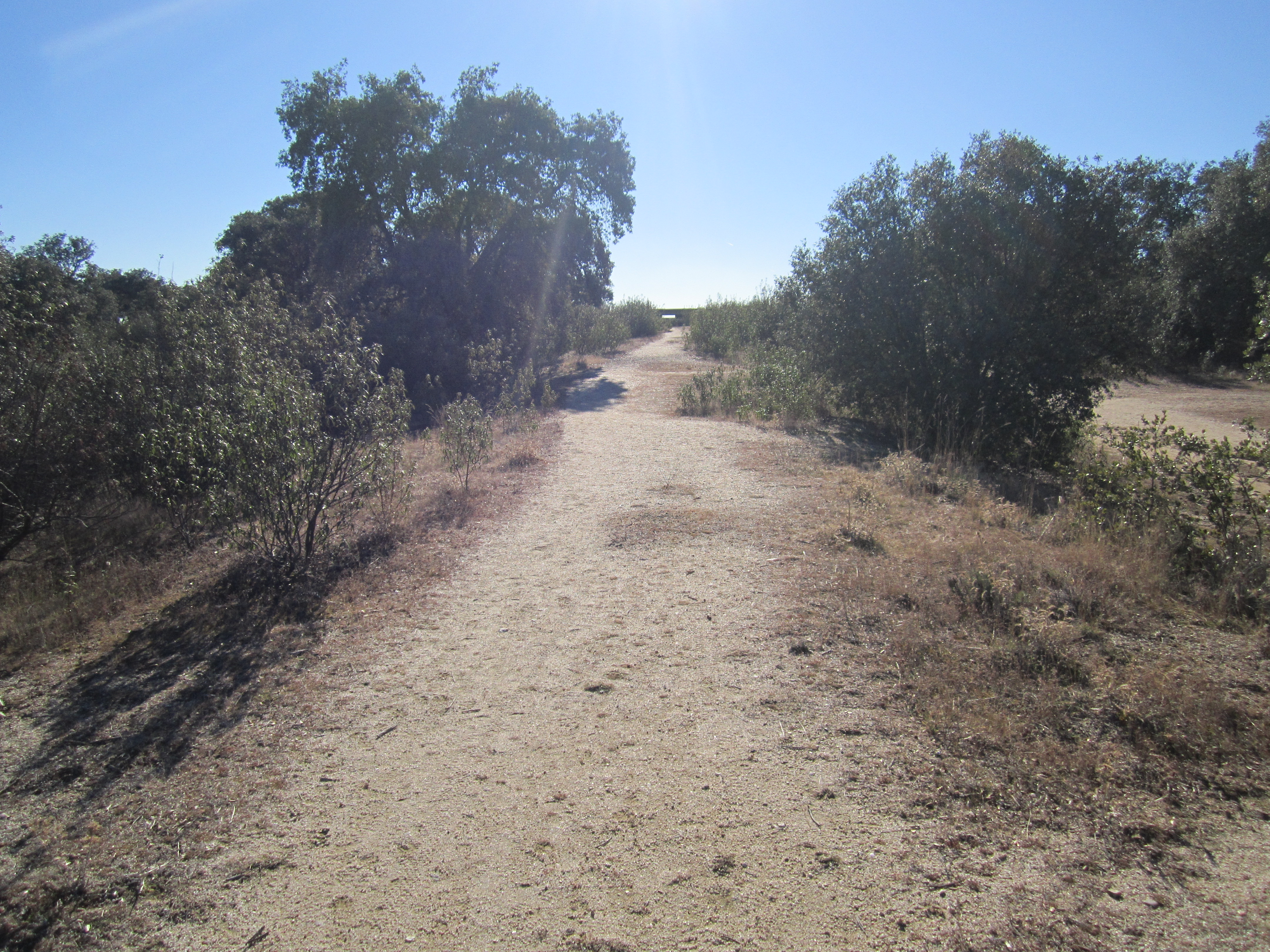 hills of madrid tour