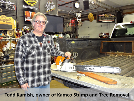 Kamco Stump and Tree Removal - Interview with Todd Kamish