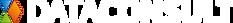 logo-DataConsult_biale_kolorowy_symbol.p