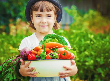 Как сформировать правильные пищевые привычки