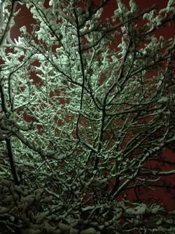 Le Pecq soir sous la neige 02 2018