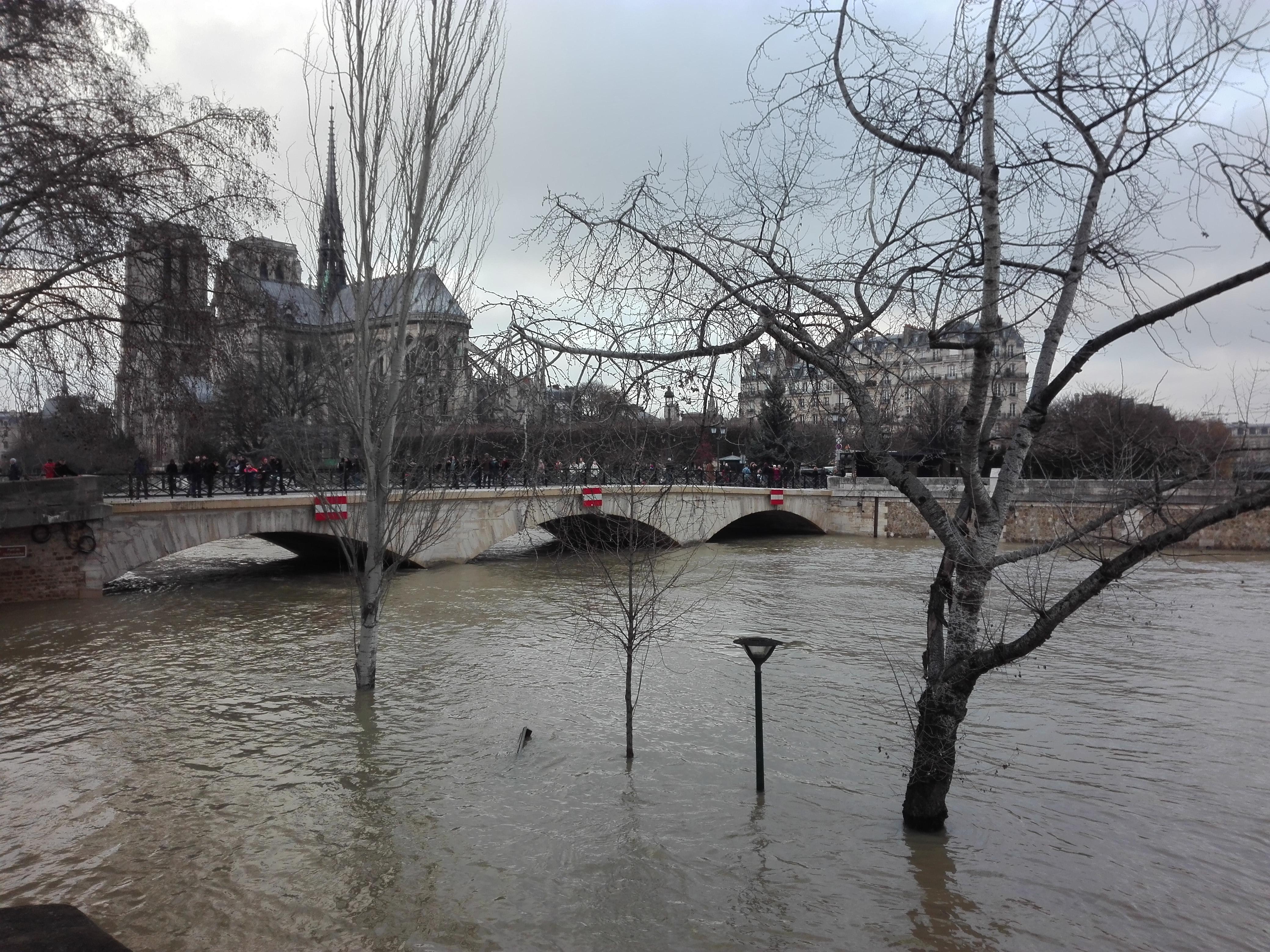 Crue de la Seine, 01 2018