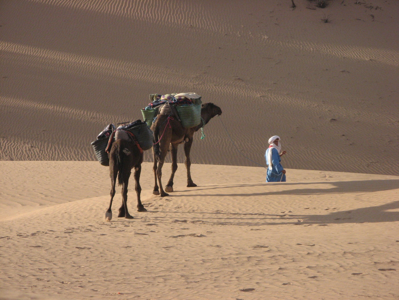 désert_marocain_11