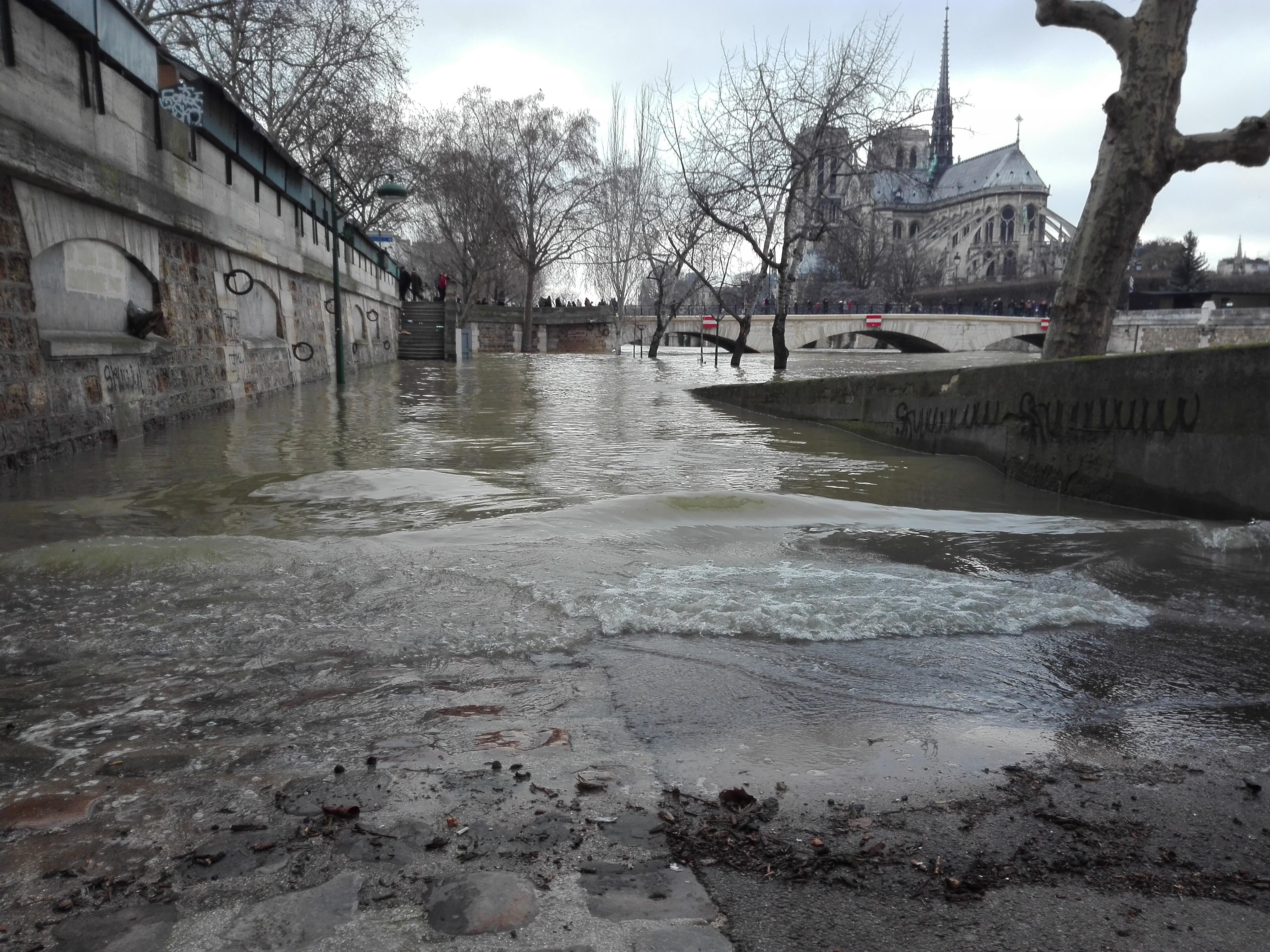 crue de la Seine, Paris 01 2018