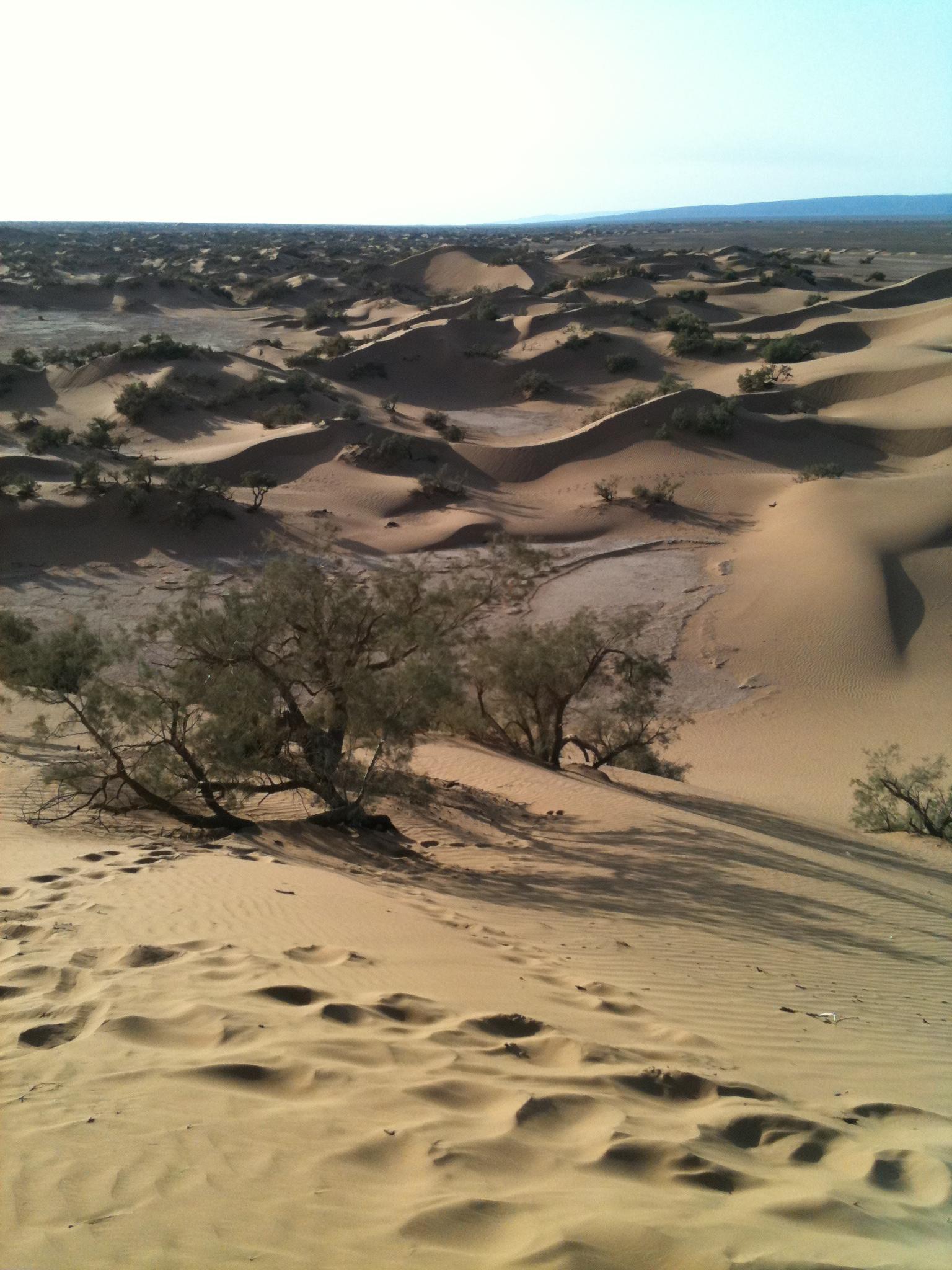 désert_marocain_10
