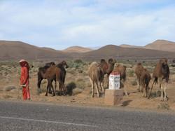 désert_marocain_3