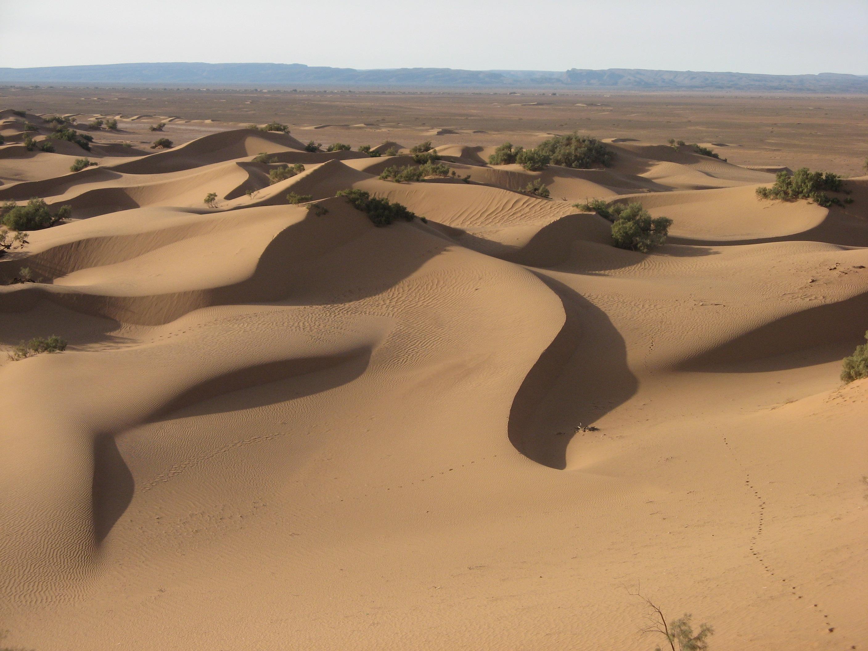 désert_marocain_8