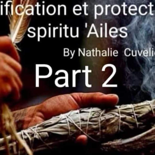 Purification Et Protection Spiritu'Ailes : Module 2